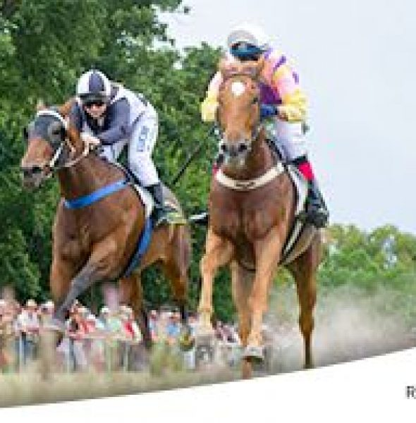 The Merton Amateur Turf Club's New Year's Day Race Meeting